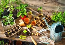 Propagation, Pots and Pellets