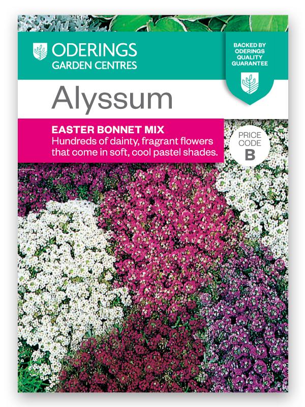 Oderings garden centre flower seeds alyssum easter bonnet mix negle Image collections
