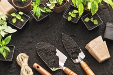 tools & gloves, making gardening safe